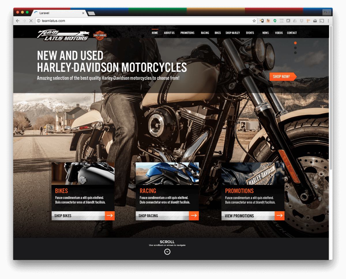 Website Design Portfolio: Harley Davidson Website